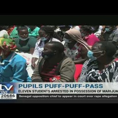 Bhang in school: 11 pupils arrested with several rolls of bhang in Embu County