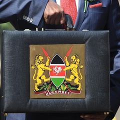 Experts Reveal Areas of the Economy Needing Revival Ahead of Budget Reading